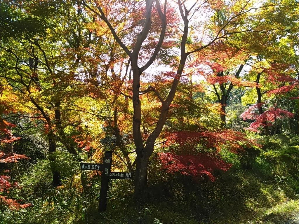 f:id:tokidokiyamanobori:20171112155758j:plain
