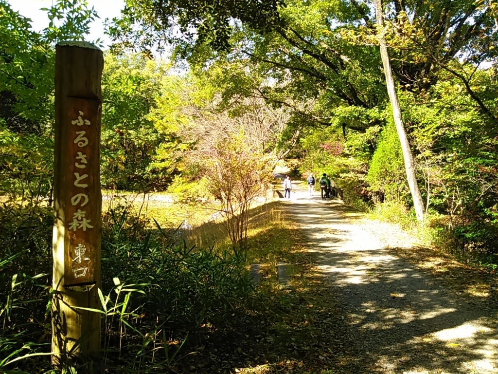 f:id:tokidokiyamanobori:20171112155820j:plain