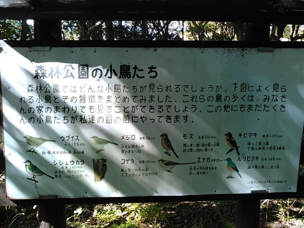 f:id:tokidokiyamanobori:20171112160148j:plain