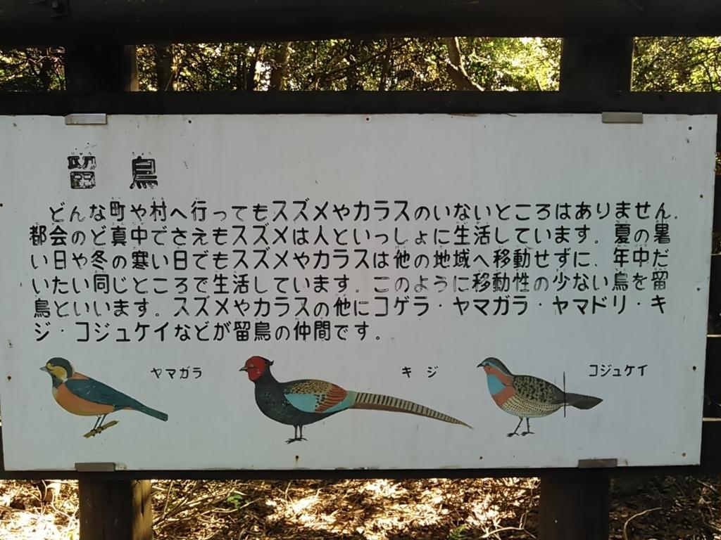 f:id:tokidokiyamanobori:20171112160201j:plain
