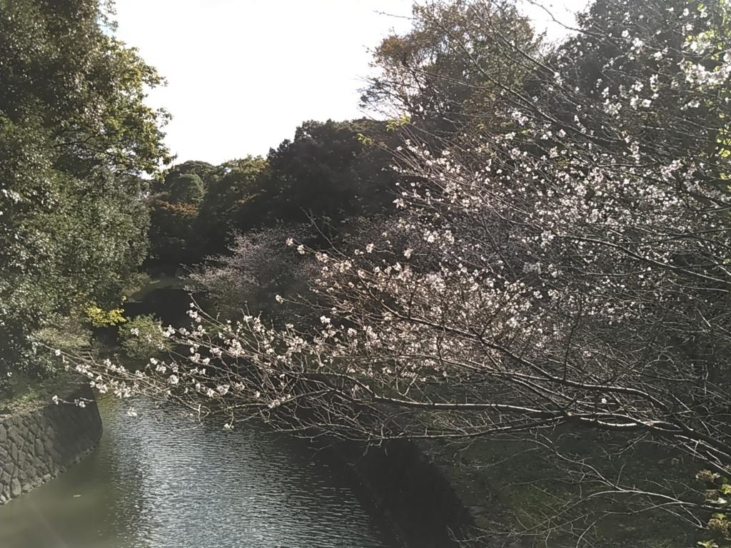 f:id:tokidokiyamanobori:20171112160838j:plain