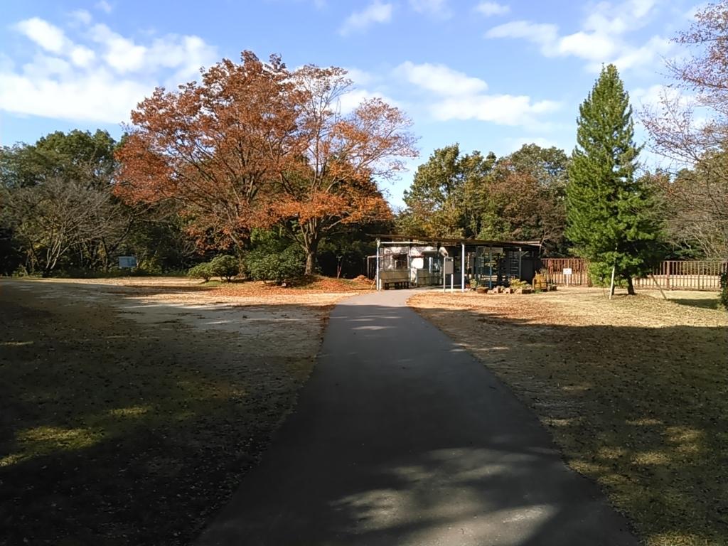 f:id:tokidokiyamanobori:20171112161242j:plain
