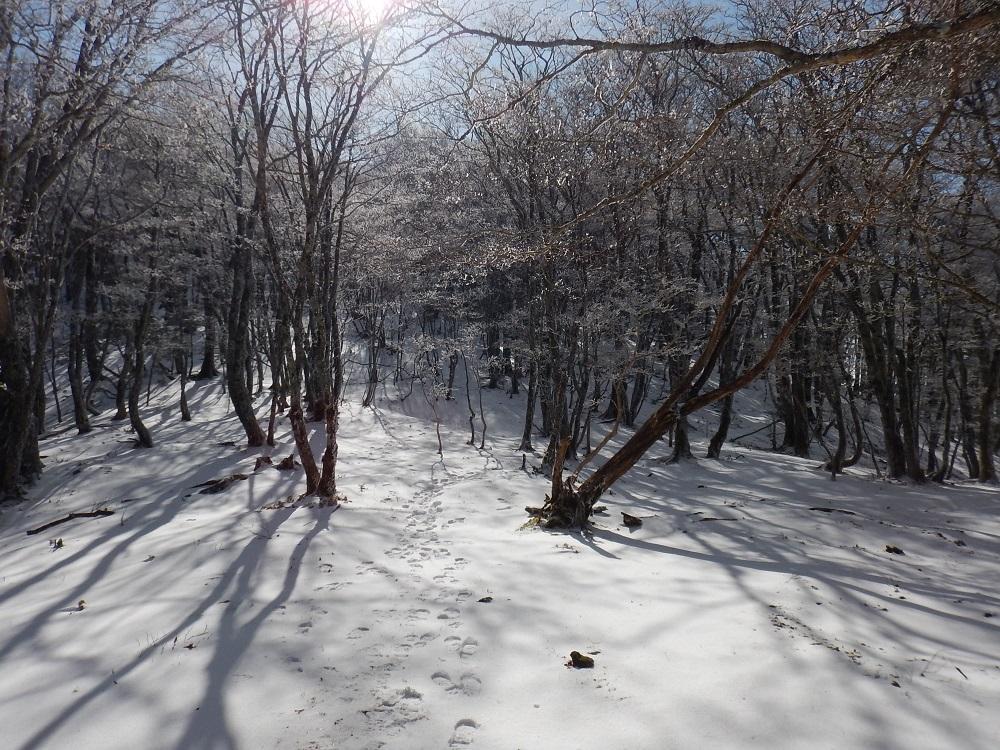 f:id:tokidokiyamanobori:20171202195907j:plain