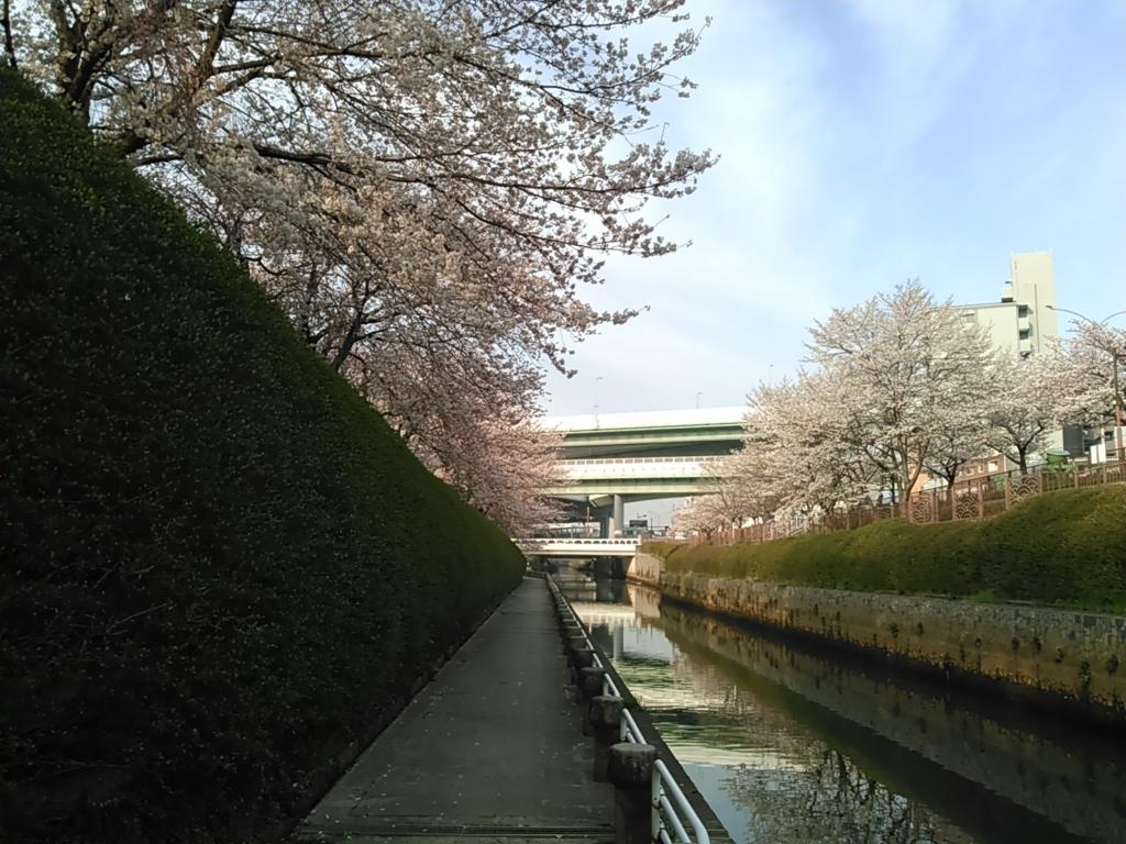 f:id:tokidokiyamanobori:20180407074502j:plain