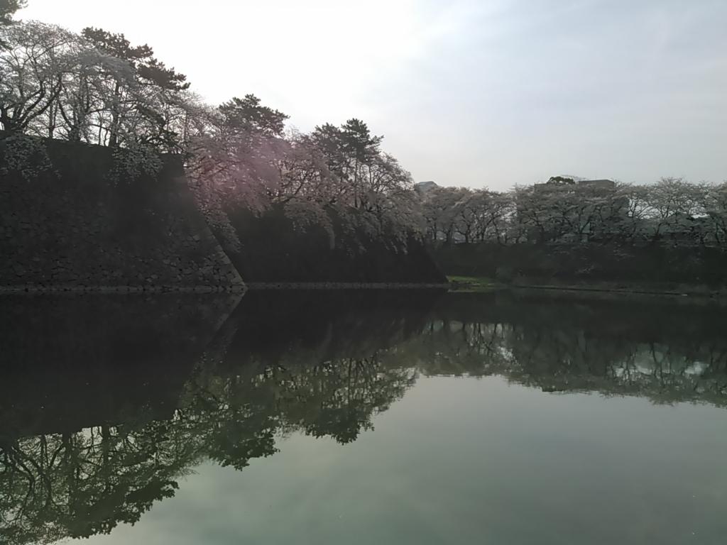 f:id:tokidokiyamanobori:20180407074725j:plain