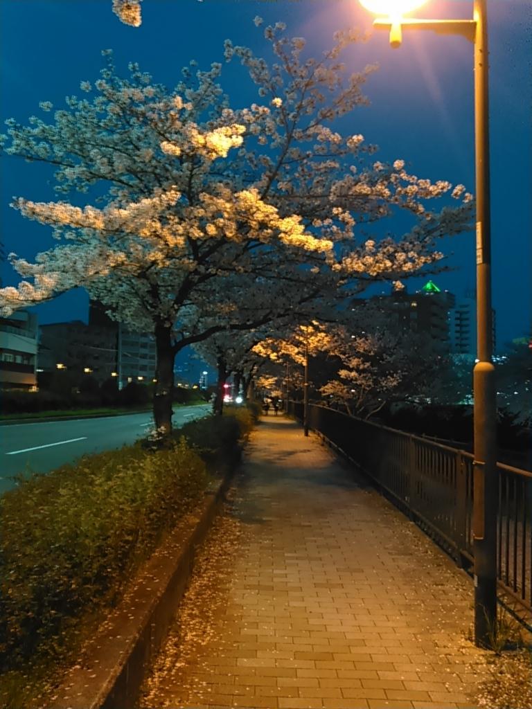 f:id:tokidokiyamanobori:20180407074739j:plain
