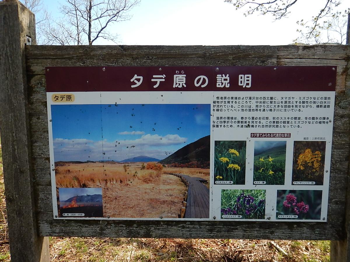f:id:tokidokiyamanobori:20190511175655j:plain