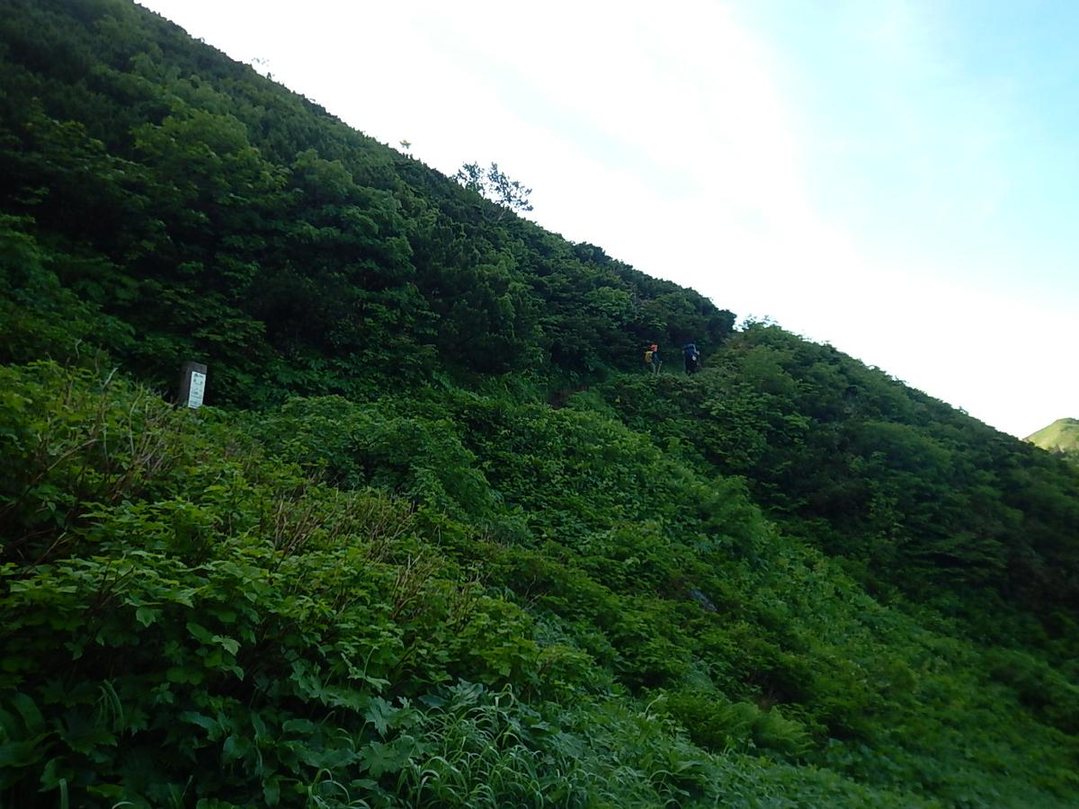 f:id:tokidokiyamanobori:20200725015518j:plain
