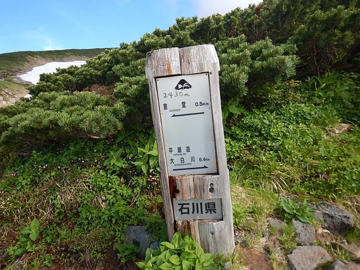 f:id:tokidokiyamanobori:20200725020551j:plain
