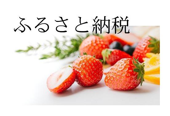 f:id:tokikomama:20200709131834j:plain