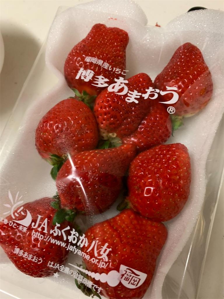 f:id:tokikomama:20210308113123j:plain