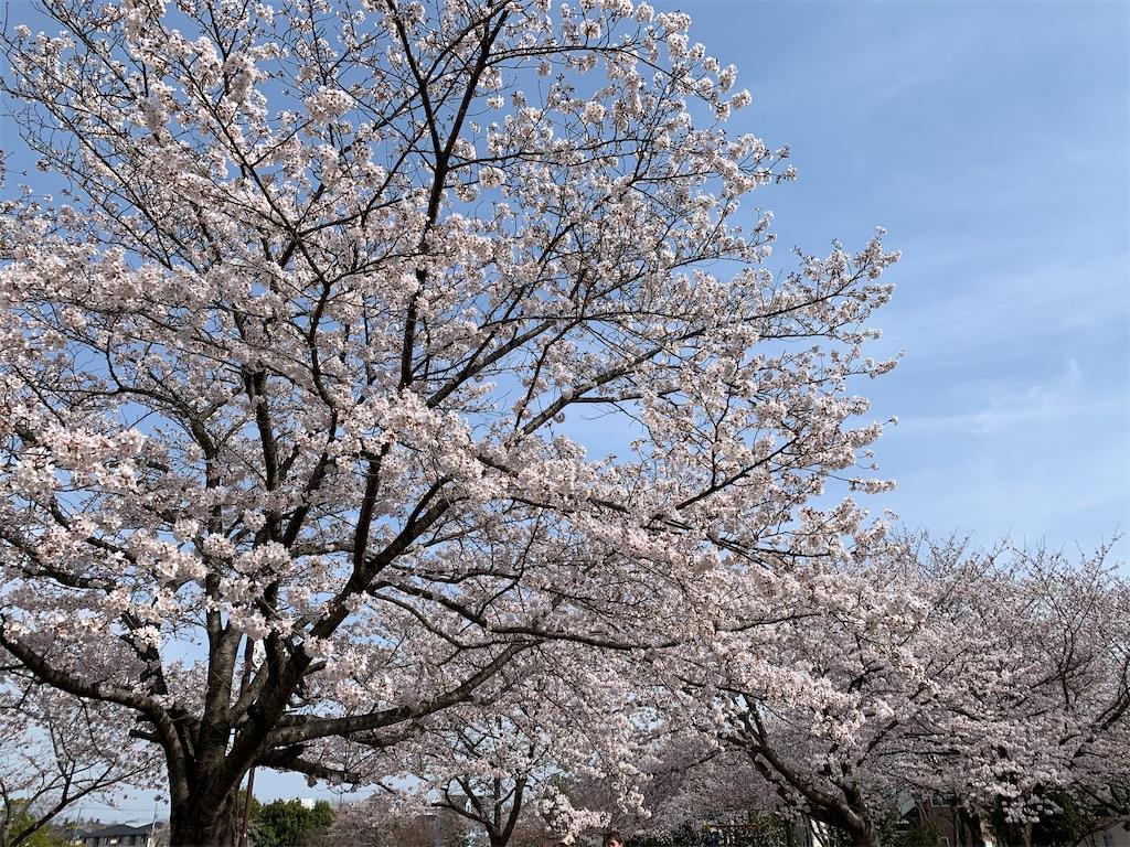 f:id:tokikomama:20210328175210j:image