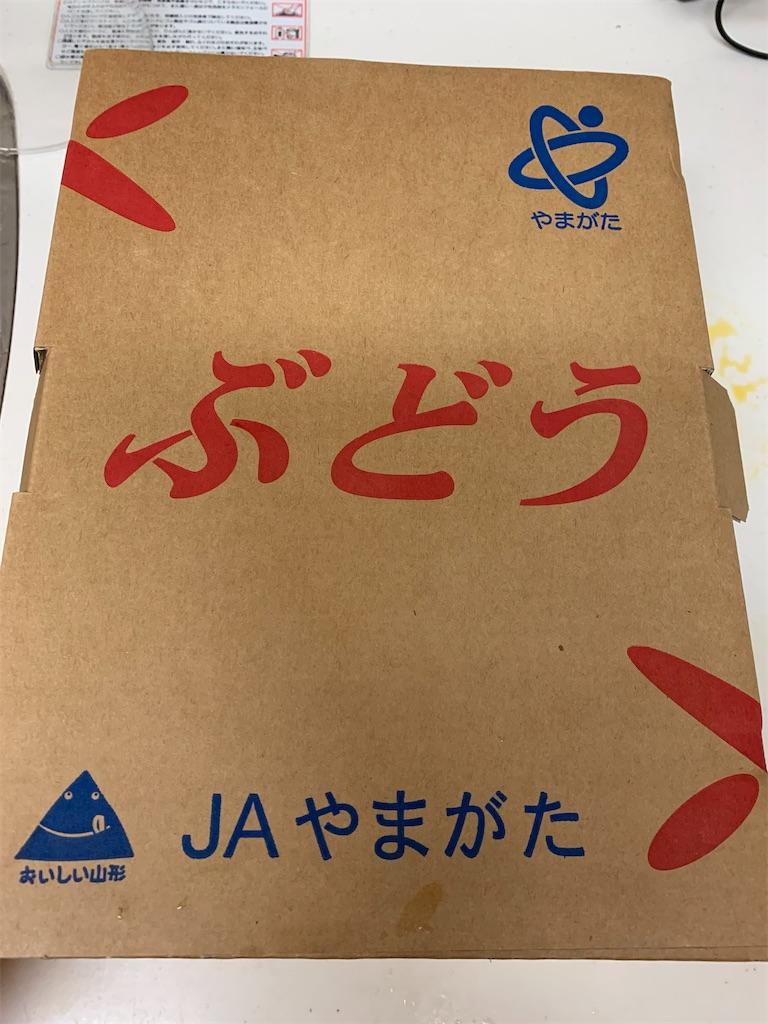 f:id:tokikomama:20210727200125j:plain