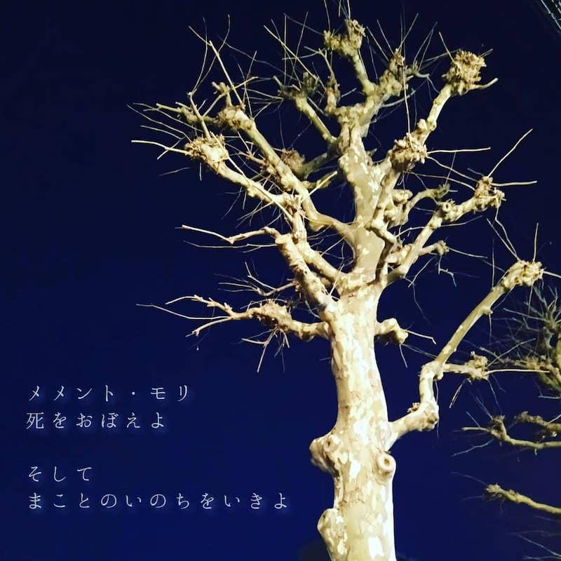 f:id:tokinokaseki:20200802214014j:plain