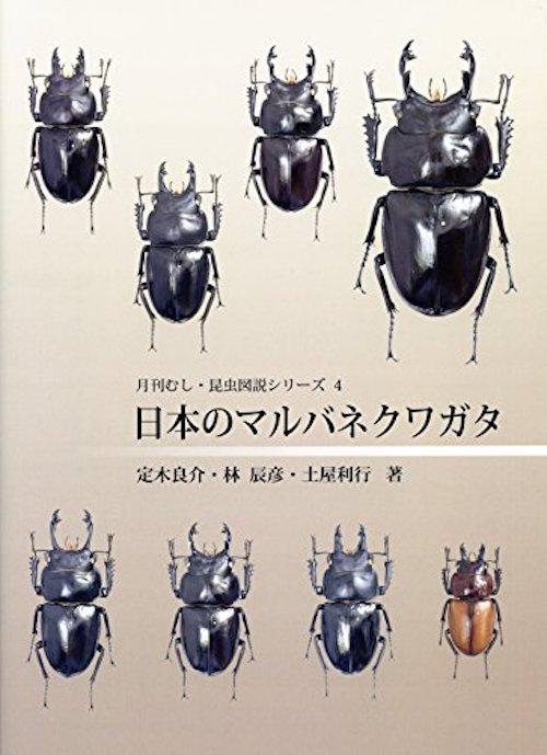 f:id:tokinokaseki:20200906094315j:plain