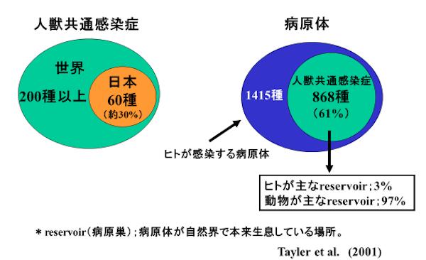 f:id:tokinokaseki:20201103195344p:plain