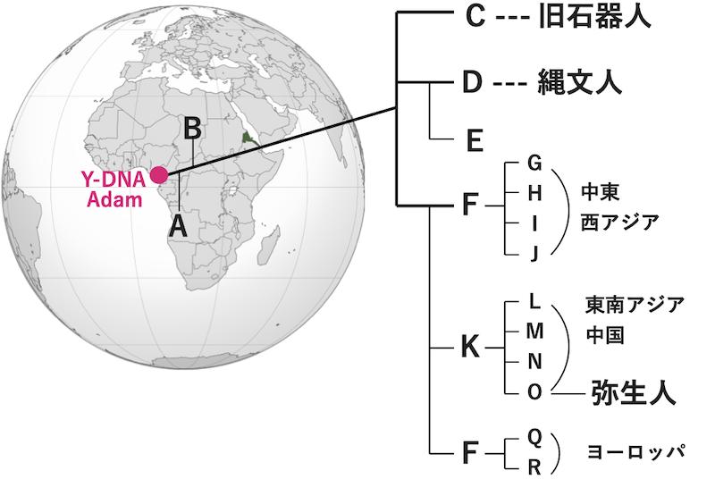 f:id:tokinokaseki:20201219182851p:plain