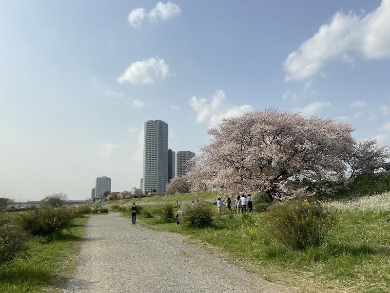 f:id:tokinokaseki:20210402083648j:plain