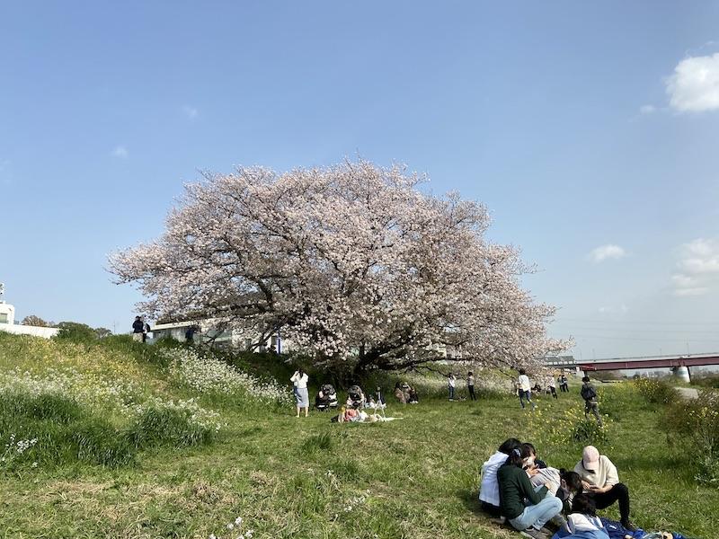 f:id:tokinokaseki:20210402083713j:plain