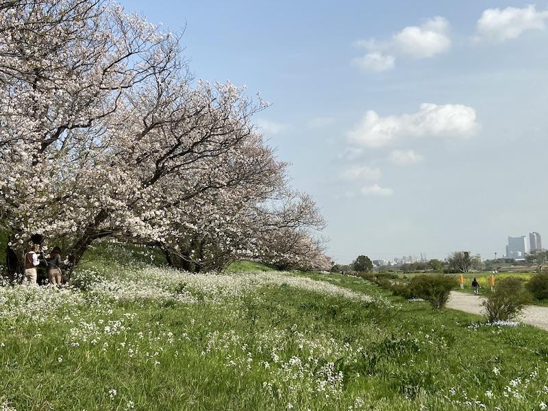 f:id:tokinokaseki:20210402083735j:plain
