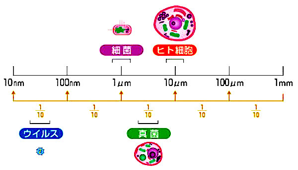 f:id:tokinokaseki:20210513215419j:plain
