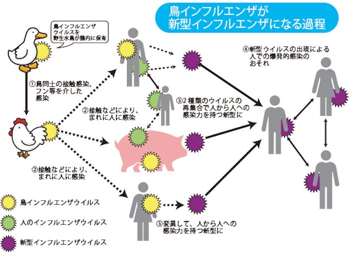 f:id:tokinokaseki:20210617215049p:plain