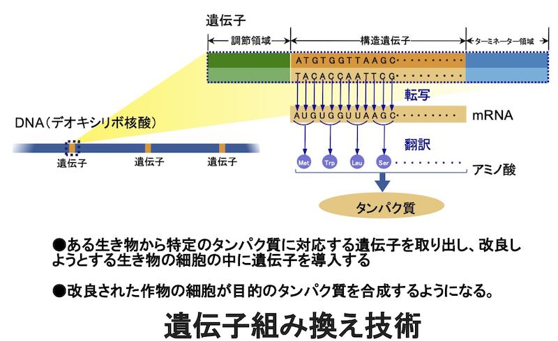 f:id:tokinokaseki:20210829210101p:plain
