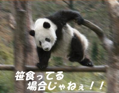 f:id:tokinomori:20161220145240j:plain