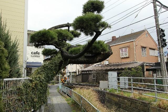 f:id:tokinousagi:20170404230525j:image
