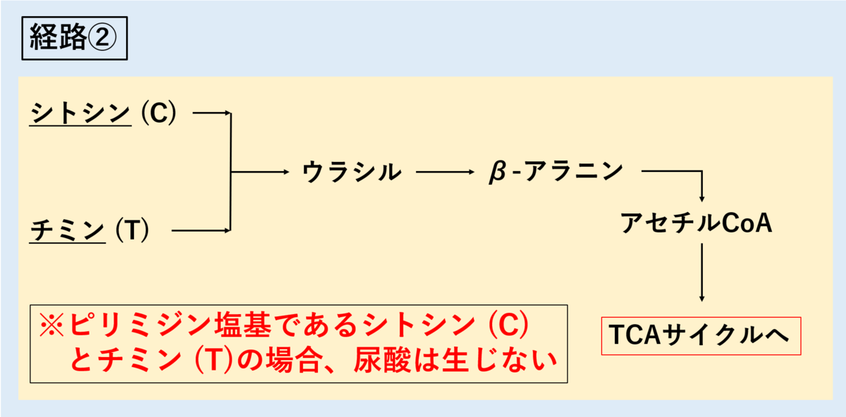 f:id:tokiotokonanawariG1:20191015193729p:plain
