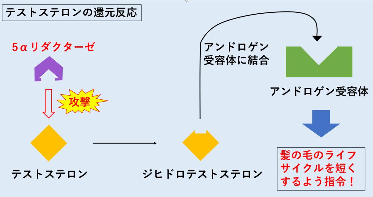 f:id:tokiotokonanawariG1:20191024174949p:plain