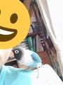 ピカと自分顔隠し(2018.6.22)