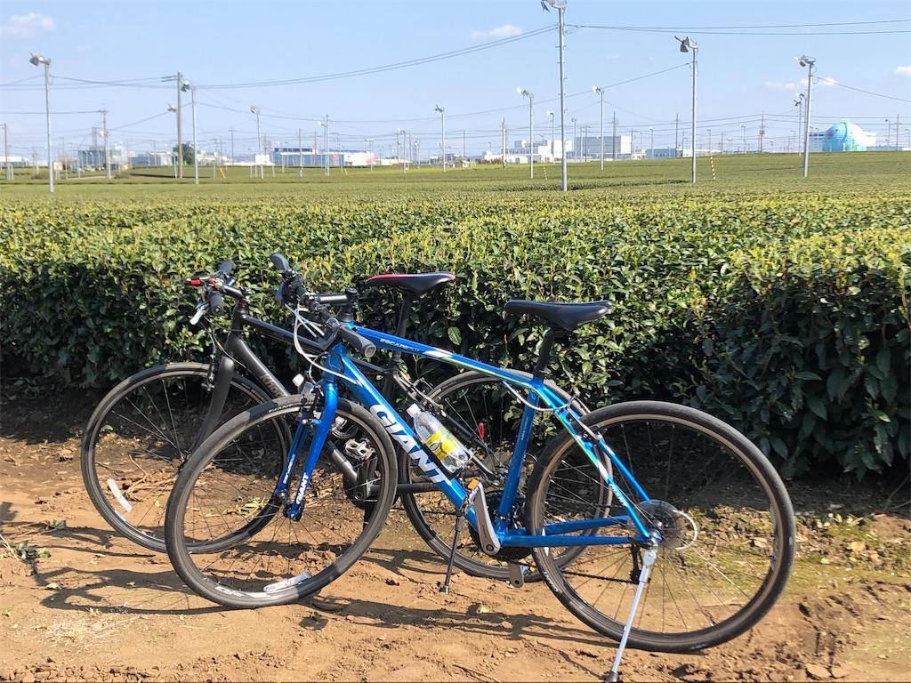 入間 サイクリング おすすめ