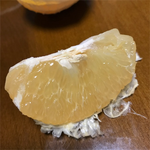 f:id:tokiwa-heizo:20170427205342j:image