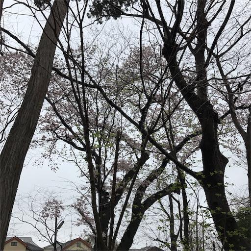 f:id:tokiwa-heizo:20170517233323j:image