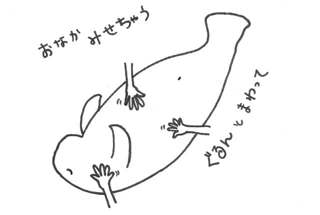 f:id:tokiwoirodoru:20160722225043j:plain