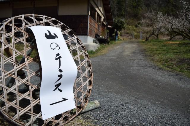 f:id:tokki-nikki:20190320212511j:image