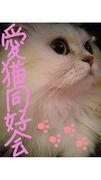 f:id:tokky1203:20100814213510j:image
