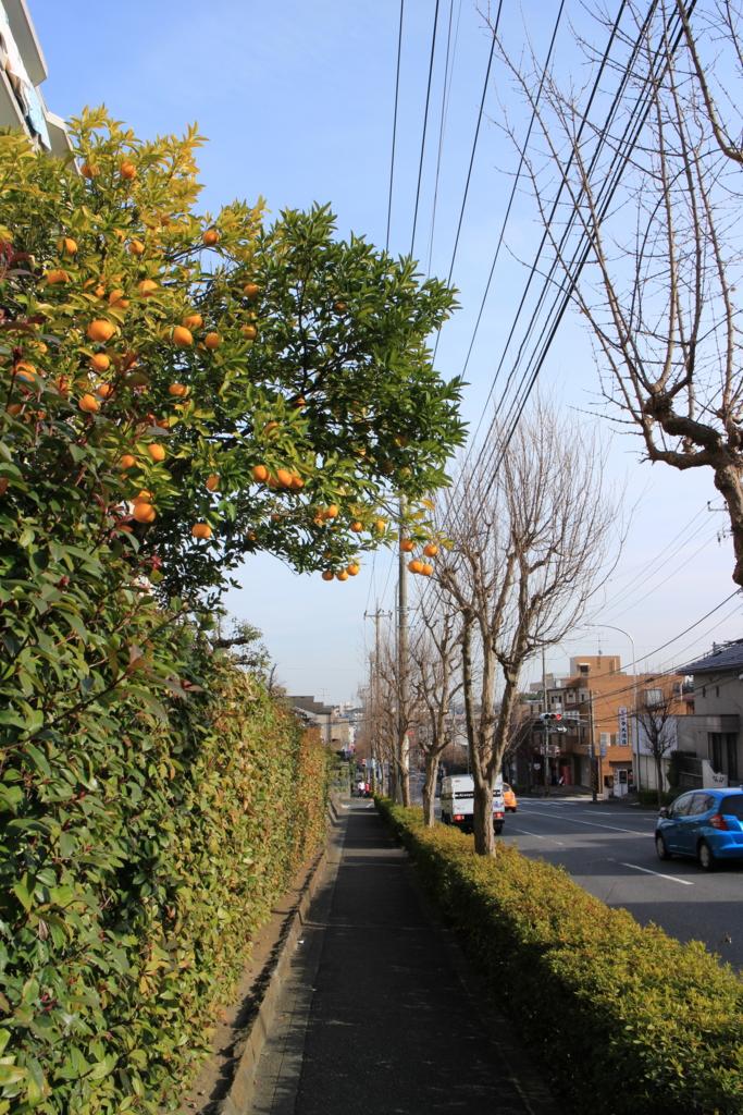 f:id:tokotoko_yuuki:20160308000235j:plain