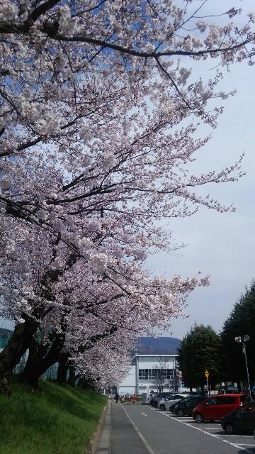 f:id:tokotoko_yuuki:20160419142652j:image