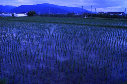f:id:tokotoko_yuuki:20160823130810j:plain