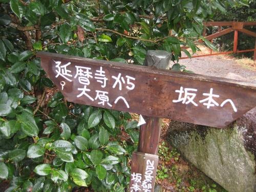f:id:tokotoko_yuuki:20161005172336j:plain