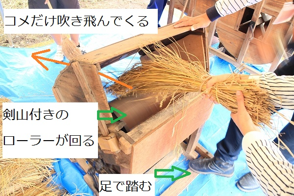f:id:tokotoko_yuuki:20161103113057j:plain