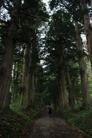 f:id:tokotoko_yuuki:20161114115514j:plain