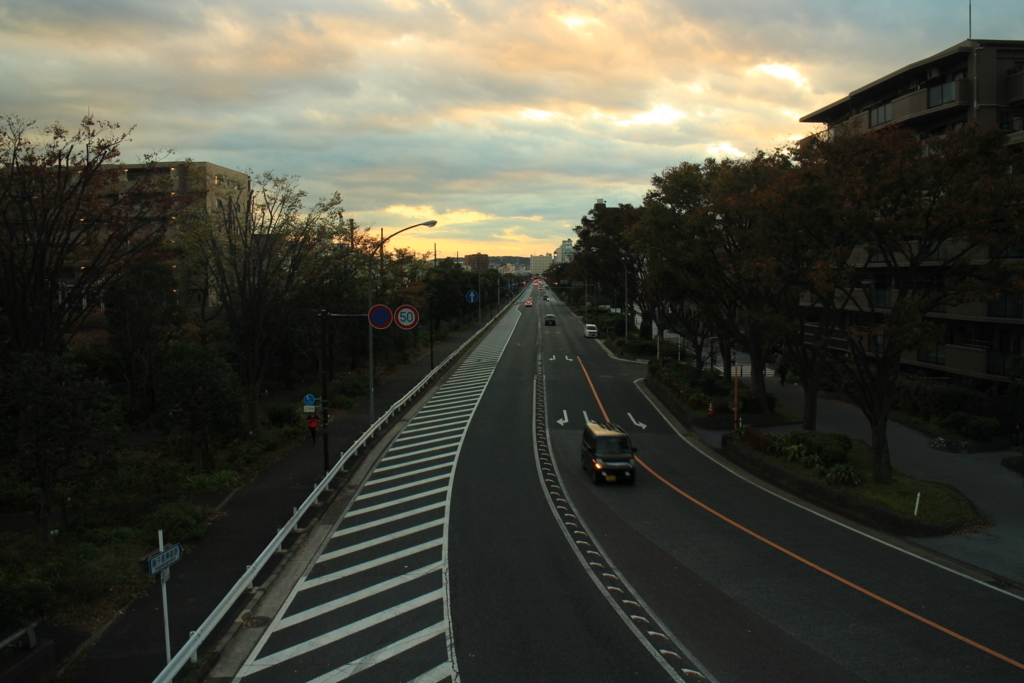 f:id:tokotoko_yuuki:20171201102632j:plain