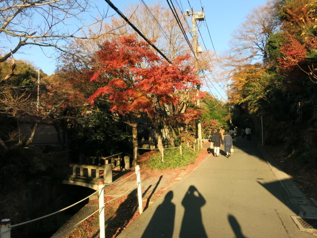 f:id:tokotoko_yuuki:20171217111410j:plain