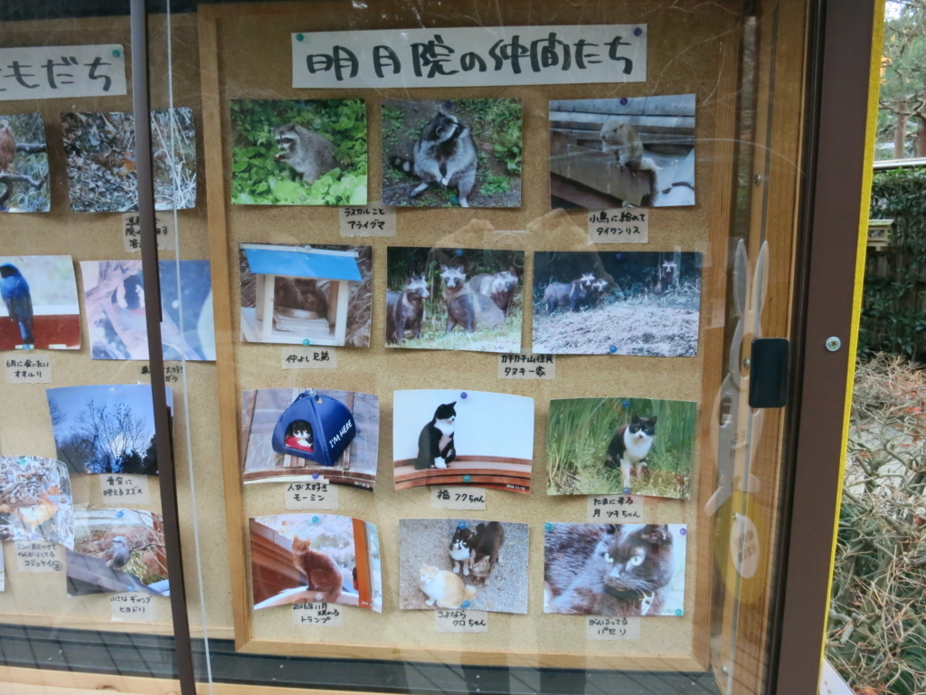 f:id:tokotoko_yuuki:20171217111817j:plain