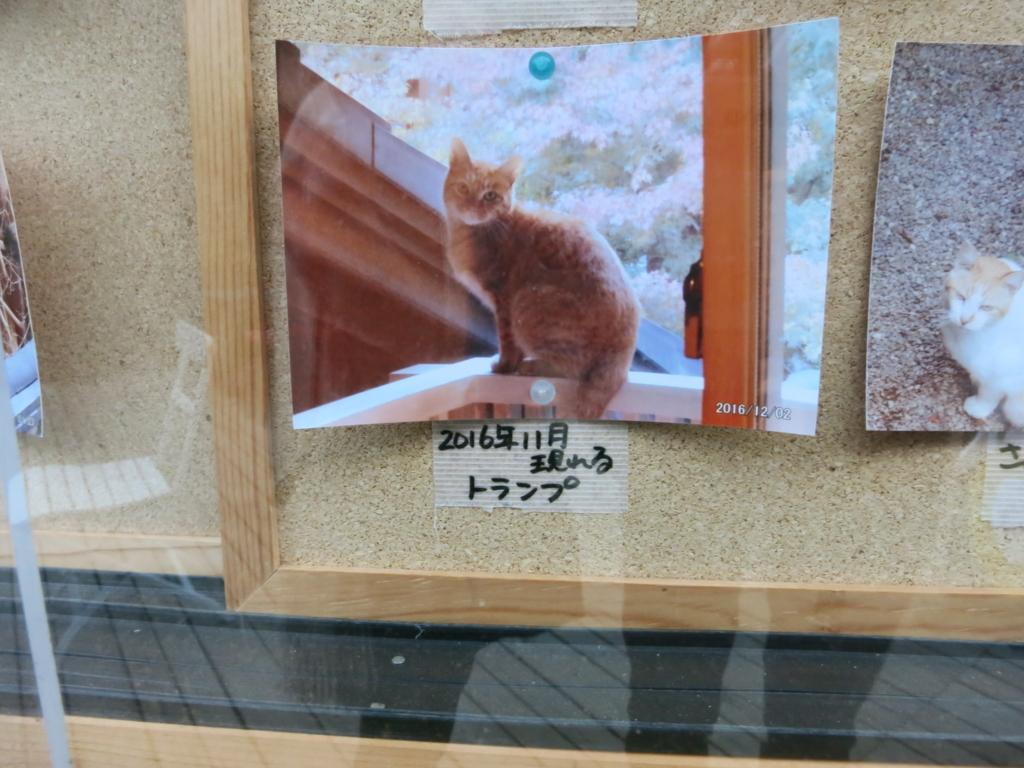 f:id:tokotoko_yuuki:20171217111832j:plain