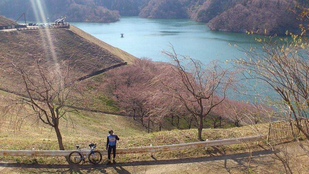 f:id:tokotoko_yuuki:20171228123704j:plain