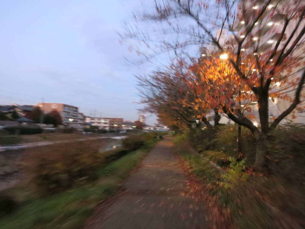 f:id:tokotoko_yuuki:20180107101628j:plain
